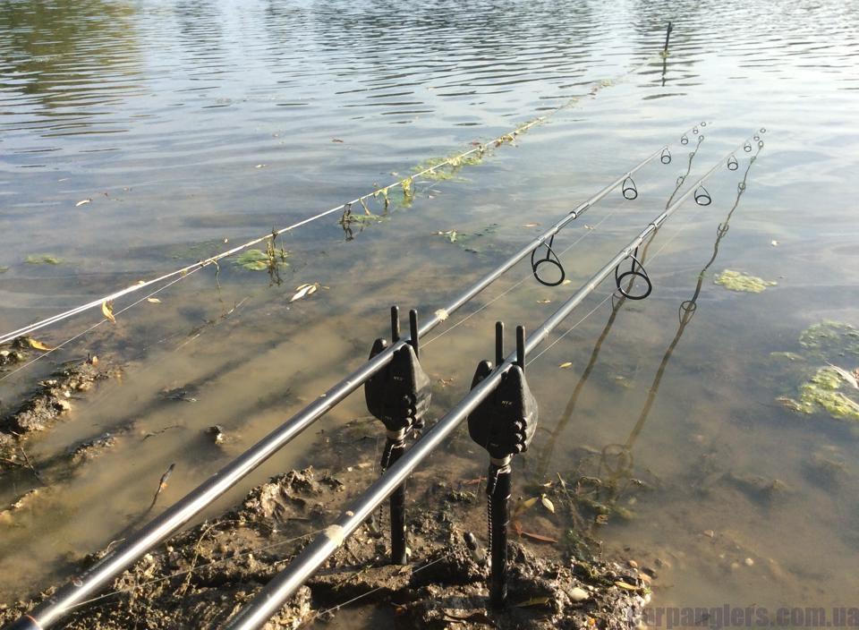 прикормка для озера фадеев