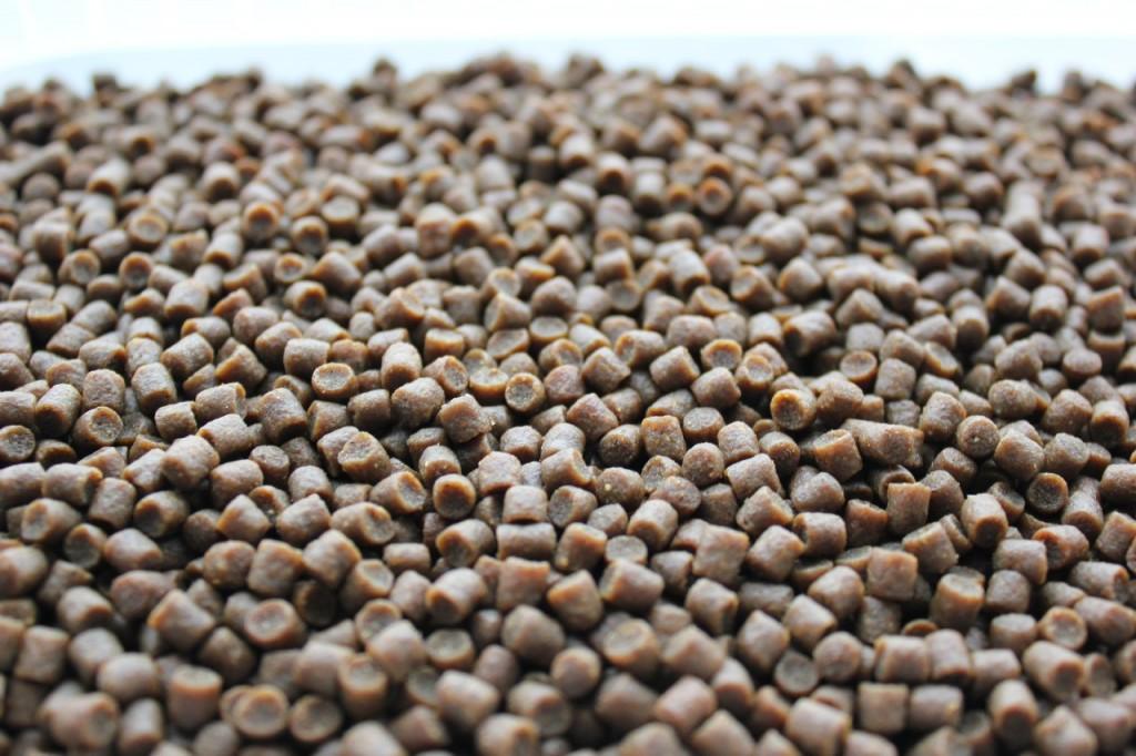 pellets-1024x682