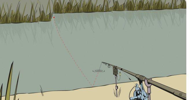 прикормка для карповой рыбалки